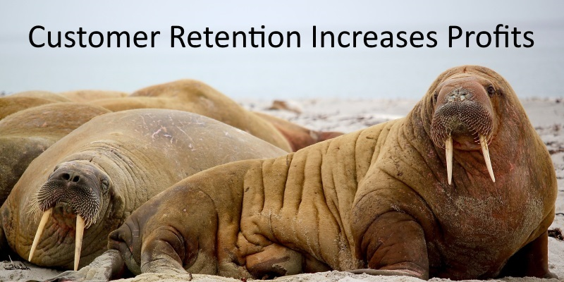How Great Customer Retention can Skyrocket your Profits