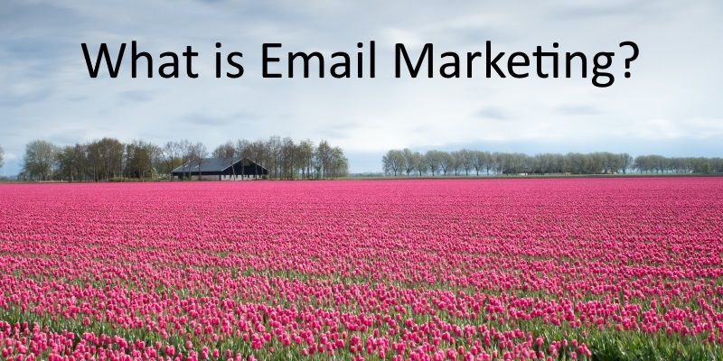 What is Email Marketing and How You Can Benefit