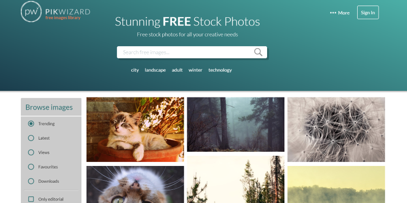 Pikwizard Free Stock Photos