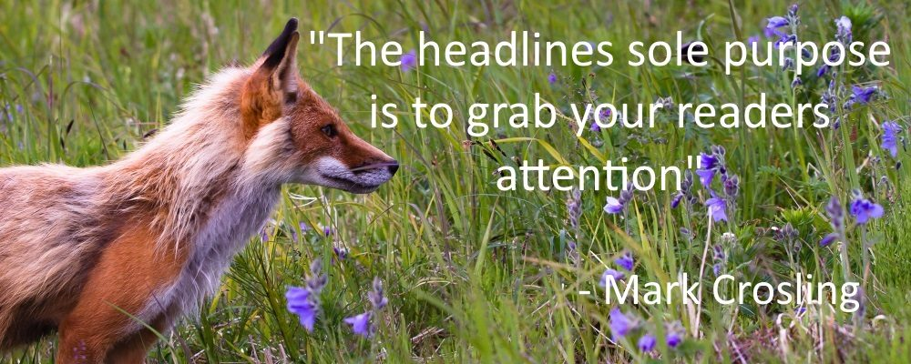 How to Write Headlines that Get Attention